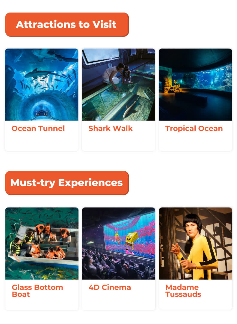 Attractions to Visit and Must-try Experiences in SEA Life Bangkok